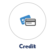 Credit Icon with Credit Card Image